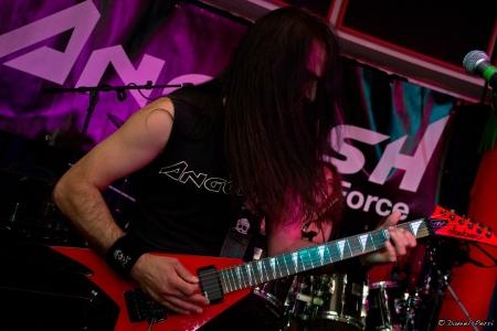 LGD - guitar 31